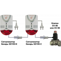 Газоанализатор Кенарь GD100-N + GD100-C + клапан 15