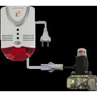 Газоанализатор Кенарь GD100-СN + клапан 20